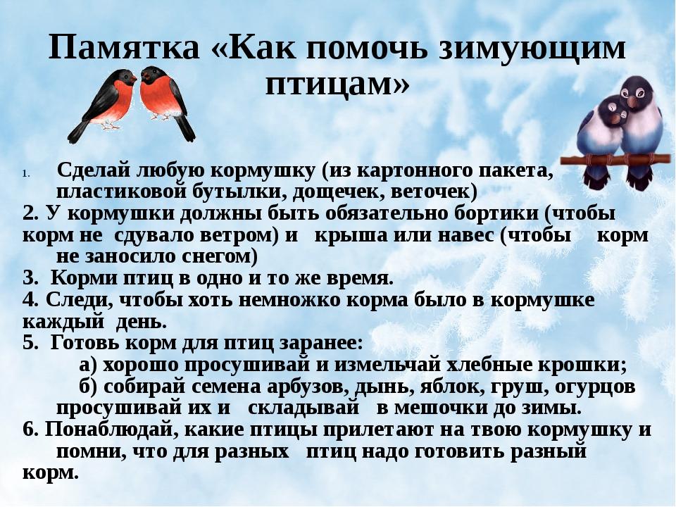 """Экологический проект """"Покормите птиц зимой"""""""