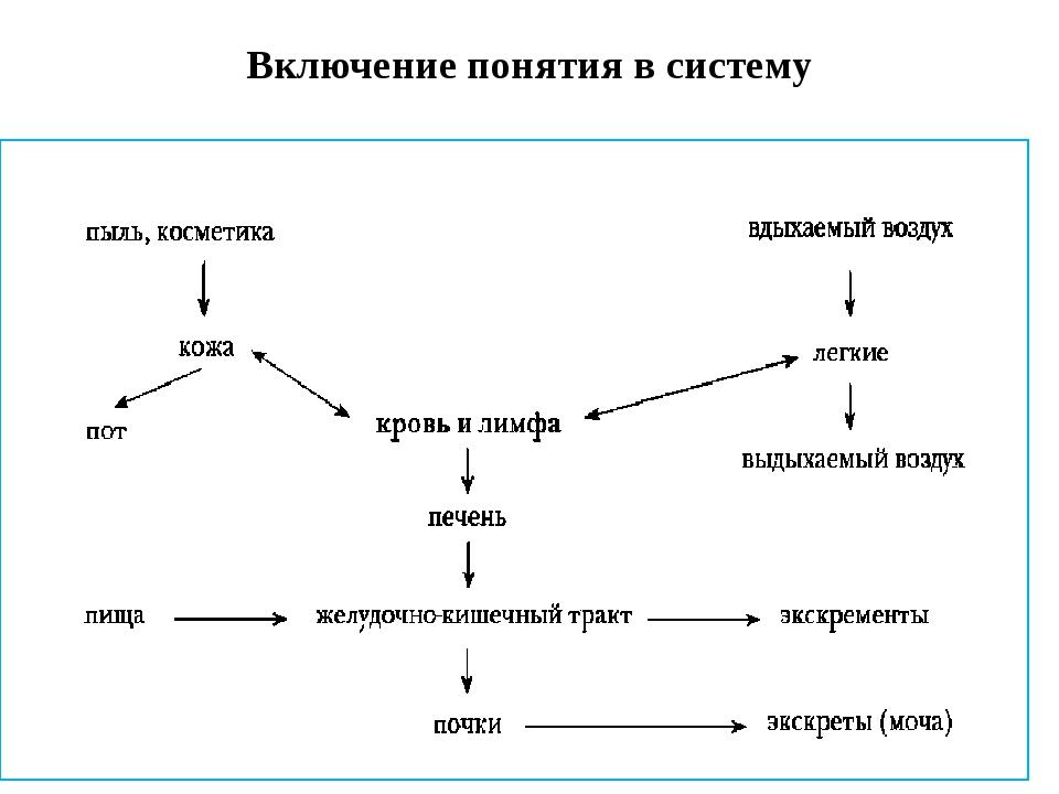Включение понятия в систему