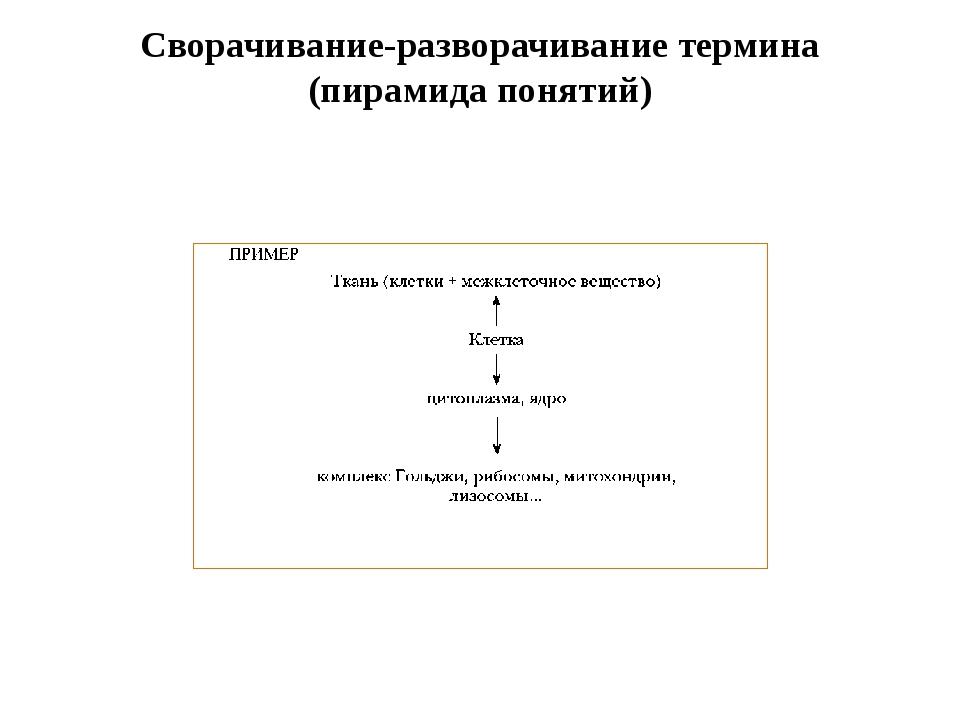 Сворачивание-разворачивание термина (пирамида понятий)