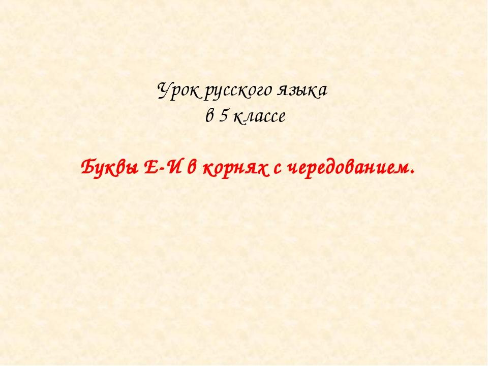 Урок русского языка в 5 классе Буквы Е-И в корнях с чередованием.