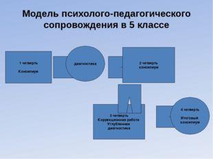 Модель психолого-педагогического сопровождения в 5 классе 3 четверть Коррекци