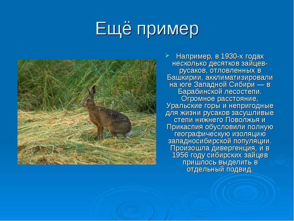Ещё пример Например, в 1930-х годах несколько десятков зайцев-русаков, отловл...