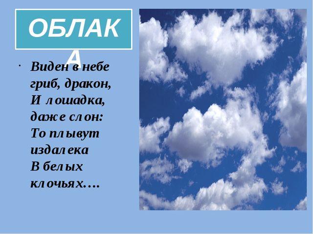 ОБЛАКА Виден в небе гриб, дракон, И лошадка, даже слон: То плывут издалека В...