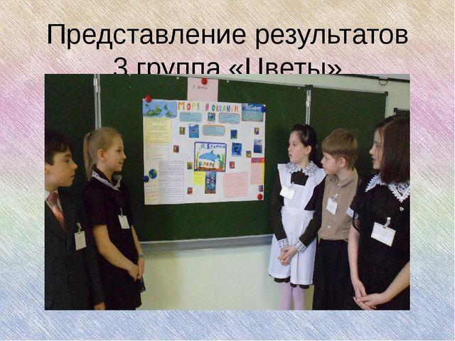 Представление результатов 3 группа «Цветы»
