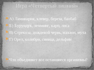 А) Ламинария, клевер, береза, баобаб Б) Бурундук, лемминг, карп, лиса В) Стре