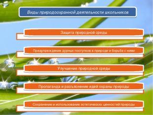 Защита природной среды Предупреждение дурных поступков в природе и борьба с н