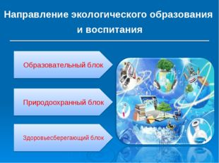 Направление экологического образования и воспитания Образовательный блок Прир