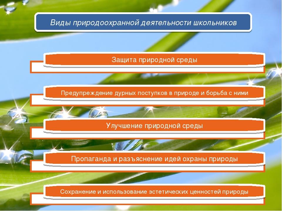 Защита природной среды Предупреждение дурных поступков в природе и борьба с н...