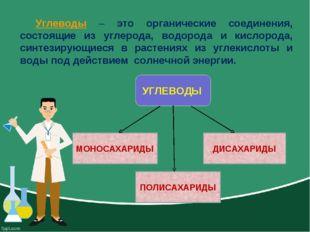 Углеводы – это органические соединения, состоящие из углерода, водорода и кис