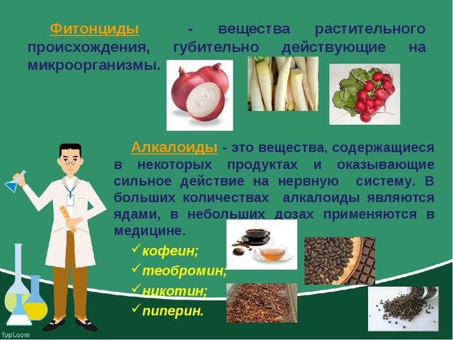 Фитонциды - вещества растительного происхождения, губительно действующие на м...