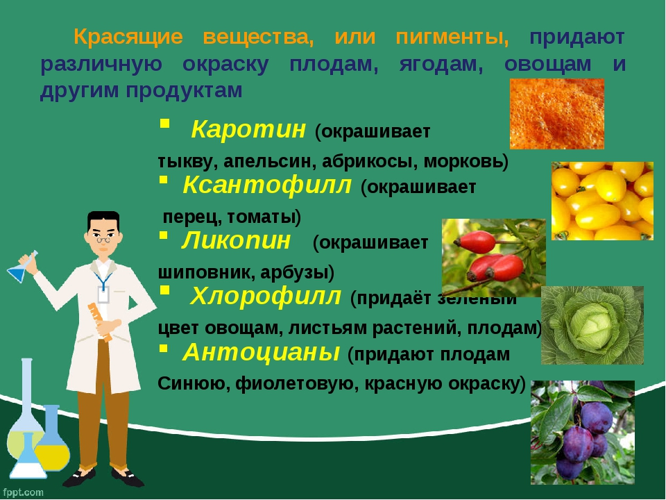 Красящие вещества, или пигменты, придают различную окраску плодам, ягодам, ов...