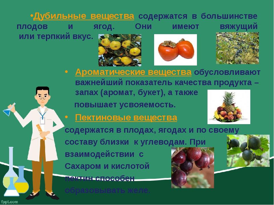 Дубильные вещества содержатся в большинстве плодов и ягод. Они имеют вяжущий...