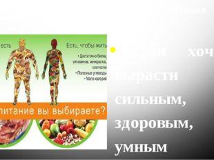 Основные правила правильного питания 1.Если хочешь вырасти сильным, здоровым,
