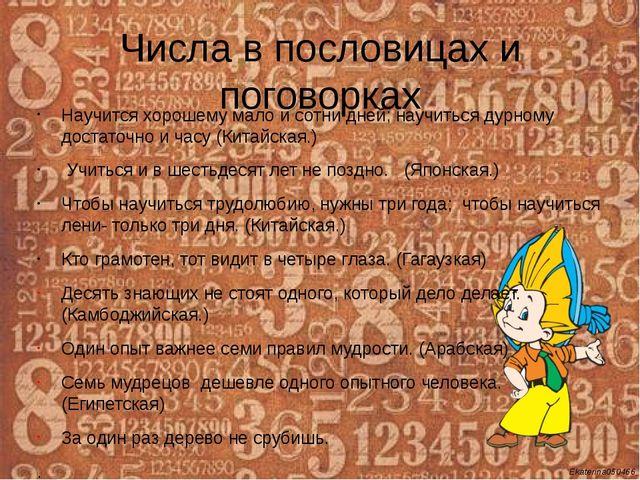 Числа в пословицах и поговорках Научится хорошему мало и сотни дней; научитьс...