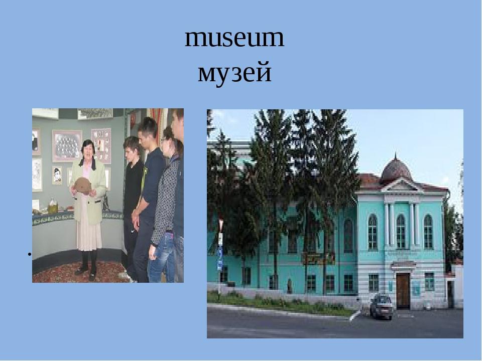 museum музей