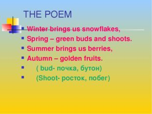 THE POEM Winter brings us snowflakes, Spring – green buds and shoots. Summer