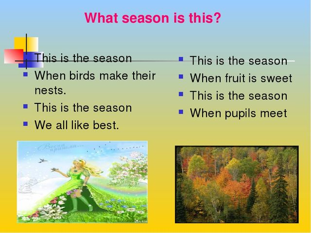 What season is this? This is the season When birds make their nests. This is...
