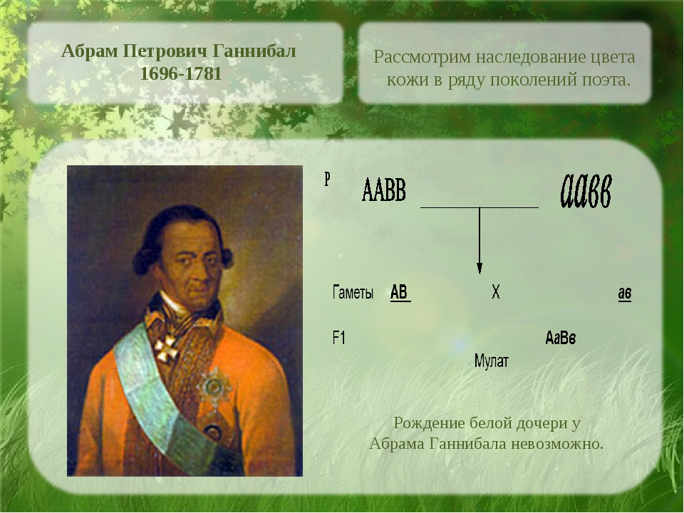 Абрам Петрович Ганнибал 1696-1781 Рассмотрим наследование цвета кожи в ряду п...