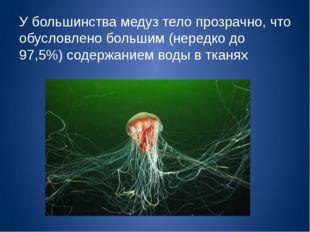 У большинства медуз тело прозрачно, что обусловлено большим (нередко до 97,5%