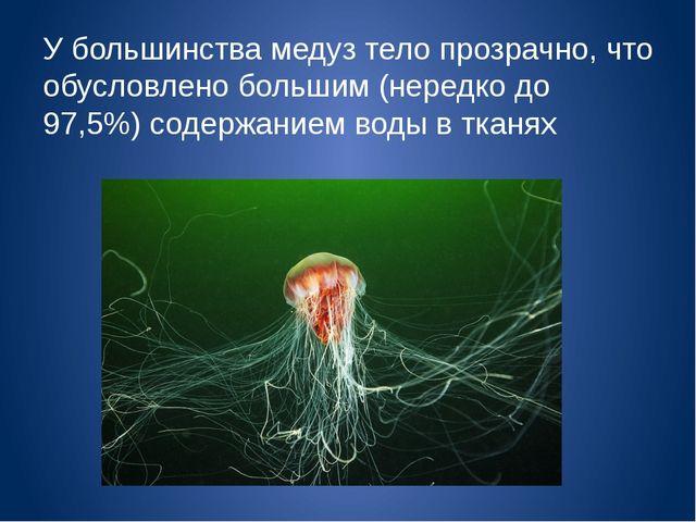 У большинства медуз тело прозрачно, что обусловлено большим (нередко до 97,5%...