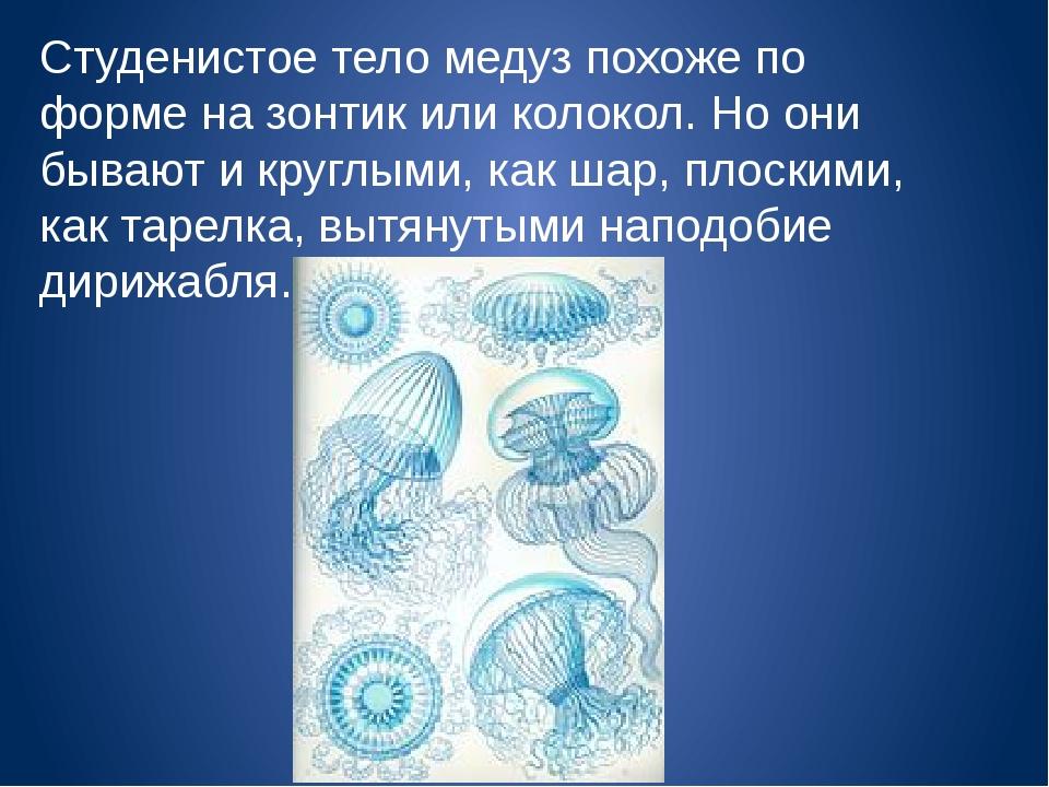 Студенистое тело медуз похоже по форме на зонтик или колокол. Но они бывают и...