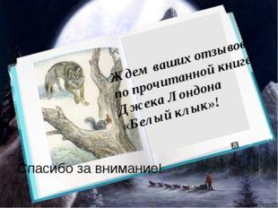 Ждем ваших отзывов по прочитанной книге Джека Лондона «Белый клык»! Спасибо
