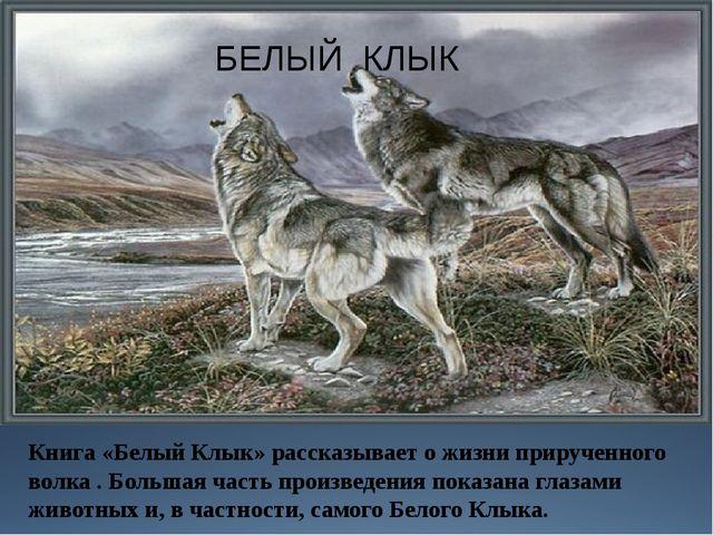 БЕЛЫЙ КЛЫК Книга «Белый Клык» рассказывает о жизни прирученного волка . Больш...