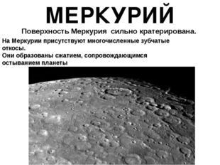 МЕРКУРИЙ Поверхность Меркурия сильно кратерирована. На Меркурии присутствую