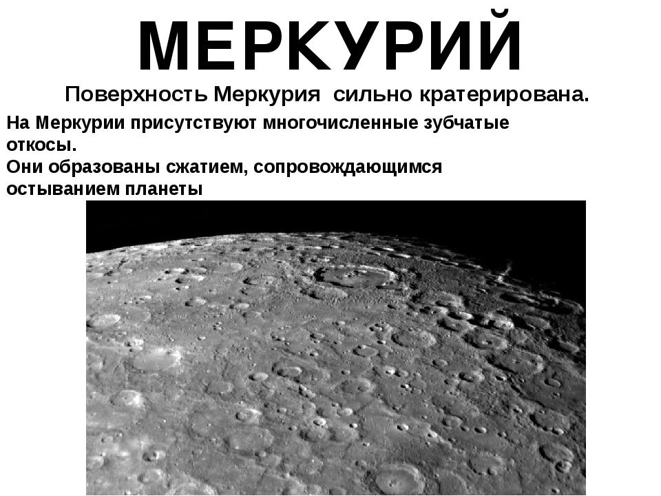 МЕРКУРИЙ Поверхность Меркурия сильно кратерирована. На Меркурии присутствую...