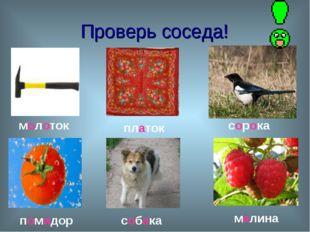 Проверь соседа! молоток платок сорока помидор собака малина