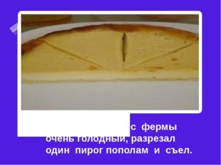 Дробик пришел с фермы очень голодный, разрезал один пирог пополам и съел.