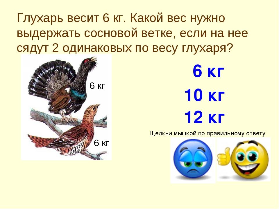 Глухарь весит 6 кг. Какой вес нужно выдержать сосновой ветке, если на нее сяд...