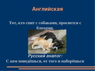 Английская Тот, кто спит с собаками, проснется с блохами. Русский аналог: С к