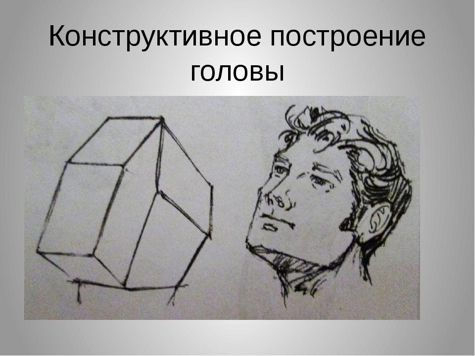 Конструктивное построение головы