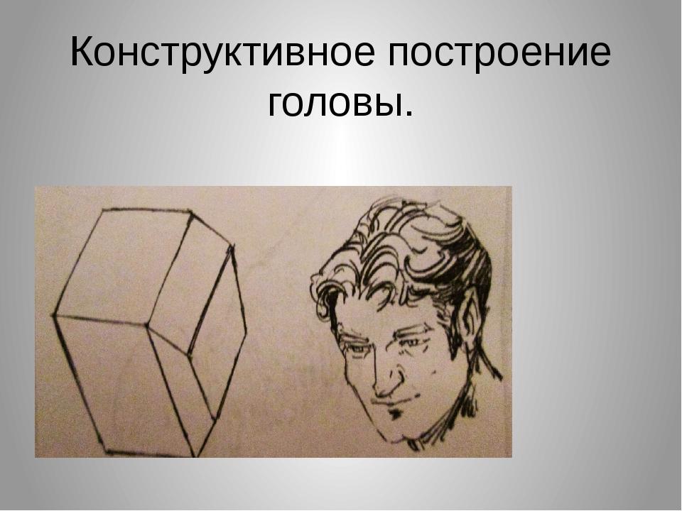 Конструктивное построение головы.