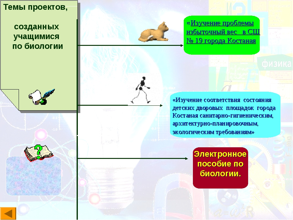 Темы проектов, созданных учащимися по биологии «Изучение проблемы избыточный...