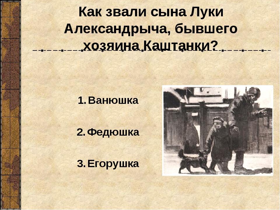 Как звали сына Луки Александрыча, бывшего хозяина Каштанки? Ванюшка Федюшка Е...