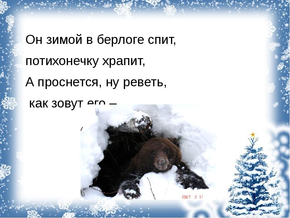 Он зимой в берлоге спит, потихонечку храпит, А проснется, ну реветь, как зов...