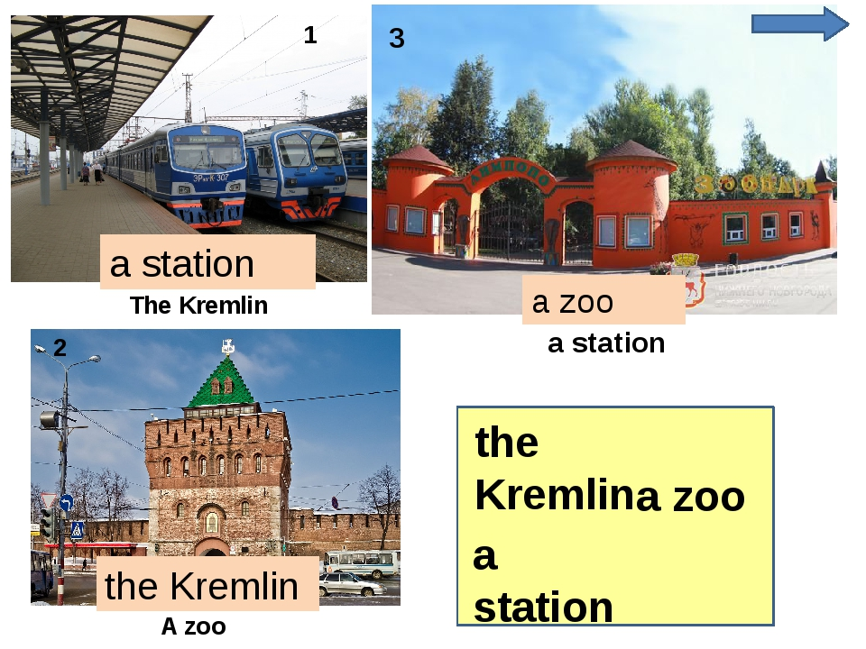 the Kremlin a zoo a zoo the Kremlin a station 1 2 3 The Kremlin a station a...