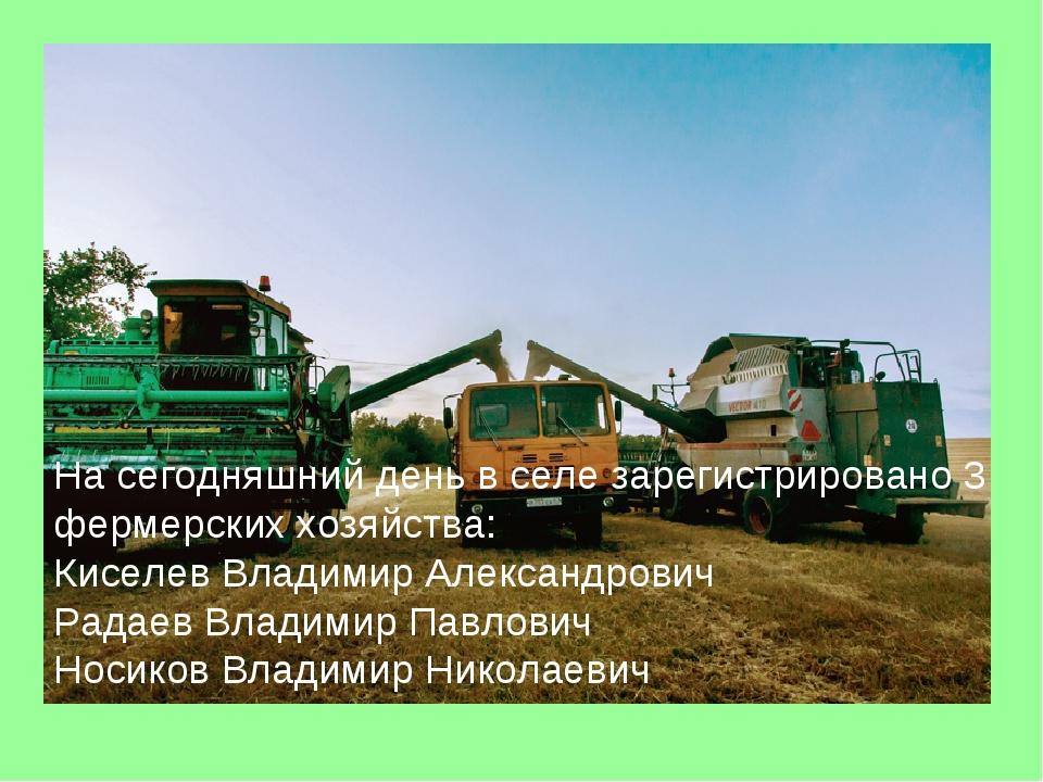 На сегодняшний день в селе зарегистрировано 3 фермерских хозяйства: Киселев В...