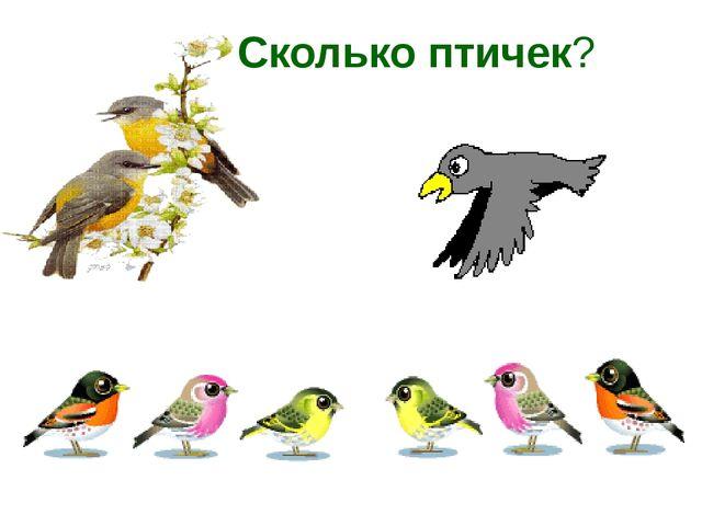 Сколько птичек?