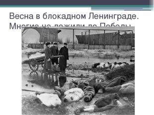 Весна в блокадном Ленинграде. Многие не дожили до Победы.