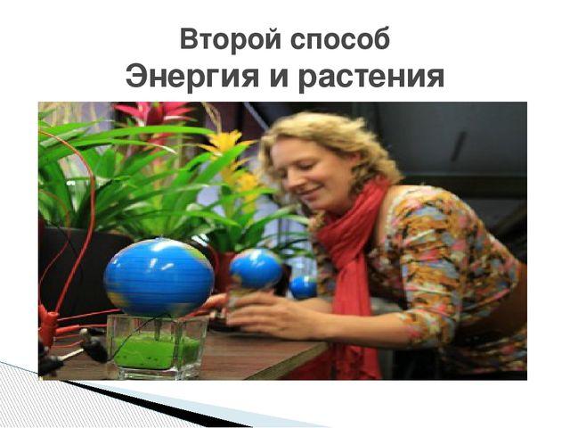 Второй способ Энергия и растения