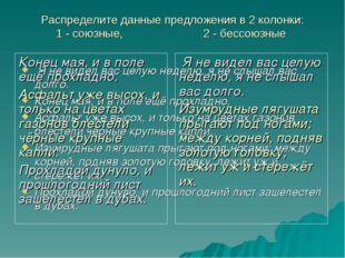 Распределите данные предложения в 2 колонки: 1 - союзные, 2 - бессоюзные Я не