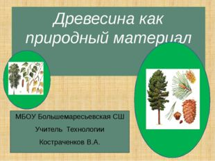 Древесина как природный материал МБОУ Большемаресьевская СШ Учитель Технологи