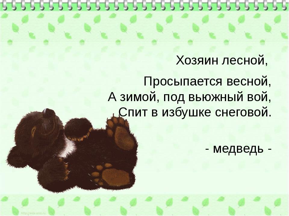 Хозяин лесной, Просыпается весной, А зимой, под вьюжный вой, Спит в избушке...