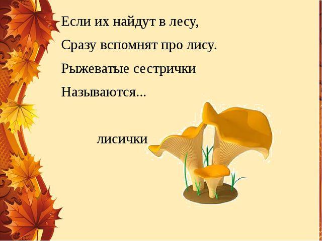 Если их найдут в лесу, Сразу вспомнят про лису. Рыжеватые сестрички Называютс...