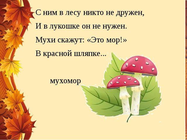 С ним в лесу никто не дружен, И в лукошке он не нужен. Мухи скажут: «Это мор!...