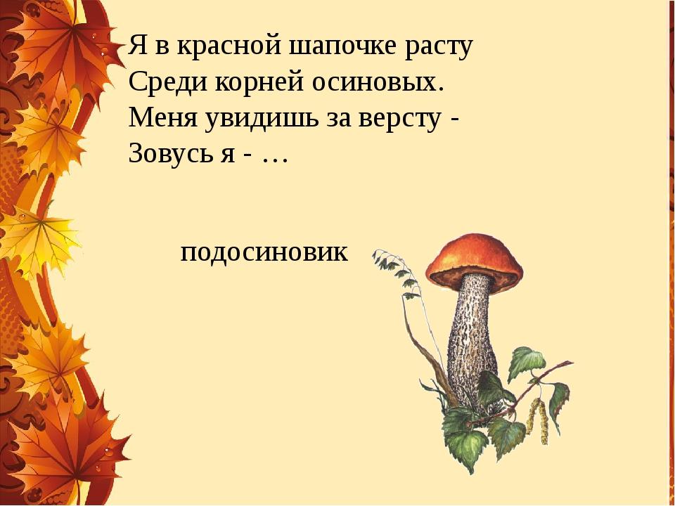 Я в красной шапочке расту Среди корней осиновых. Меня увидишь за версту - Зов...