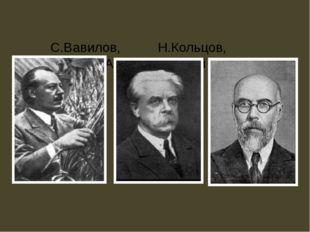 С.Вавилов, Н.Кольцов, А.Серебровский